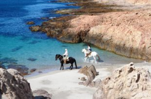 Horse-Riding - Attipica (HA Web)