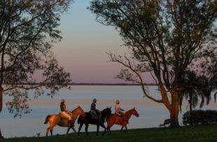 Horse Riding - Senderos (Dhruv)